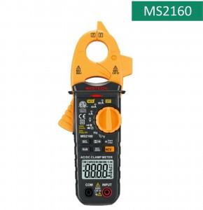 MS2160 (Copy)